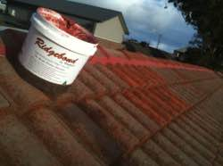 Repointing concrete roof tiles
